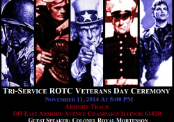 2014 VETERANS DAY FLYER